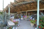 La Luna - Mykonos Beach Restaurant suitable for beachwear attire